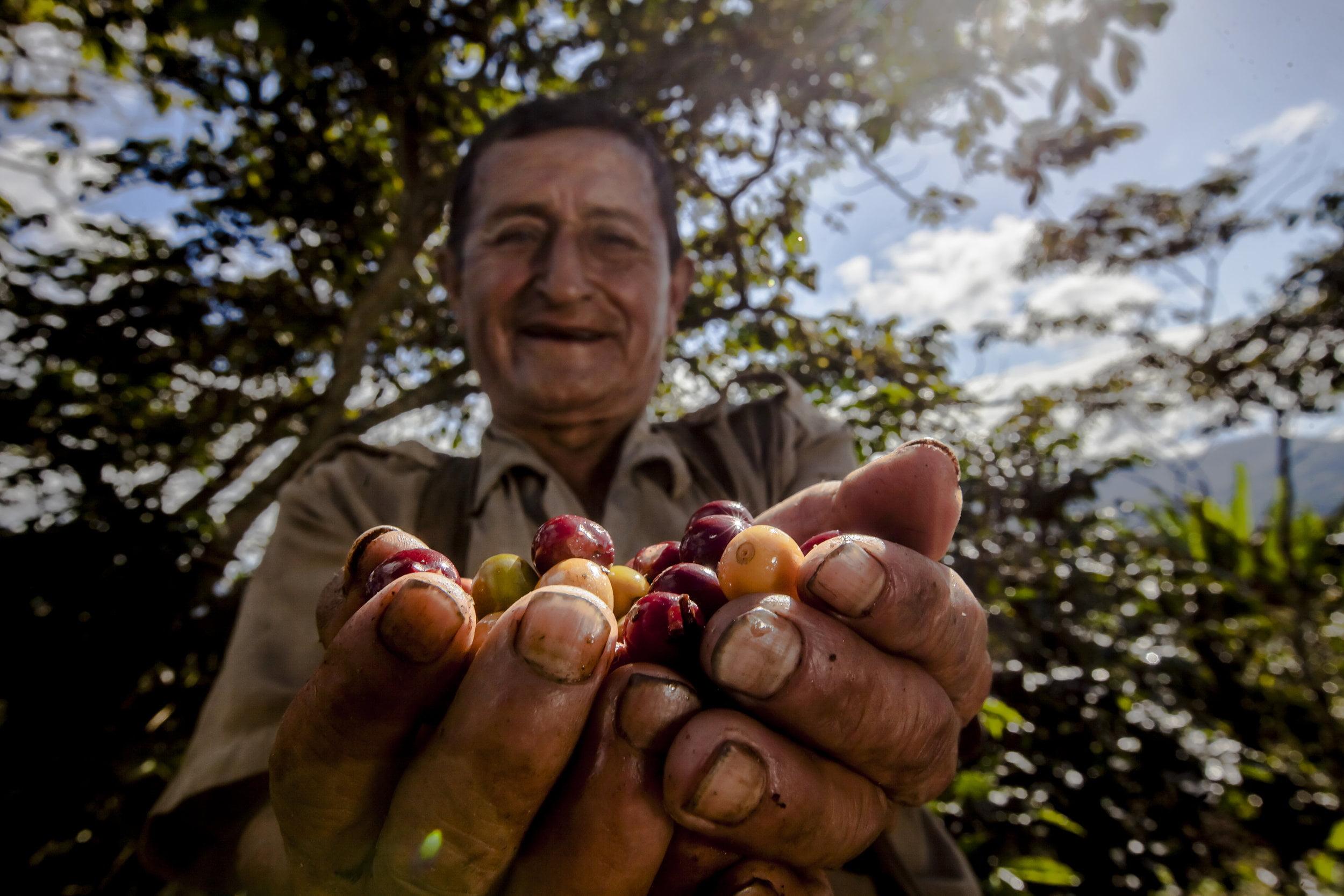 ¡Se viene eventazo cafeteador por el Día del Café Peruano!