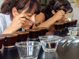 ¡Métele café! Episodio 4 del podcast cafetero: cafés de especialidad