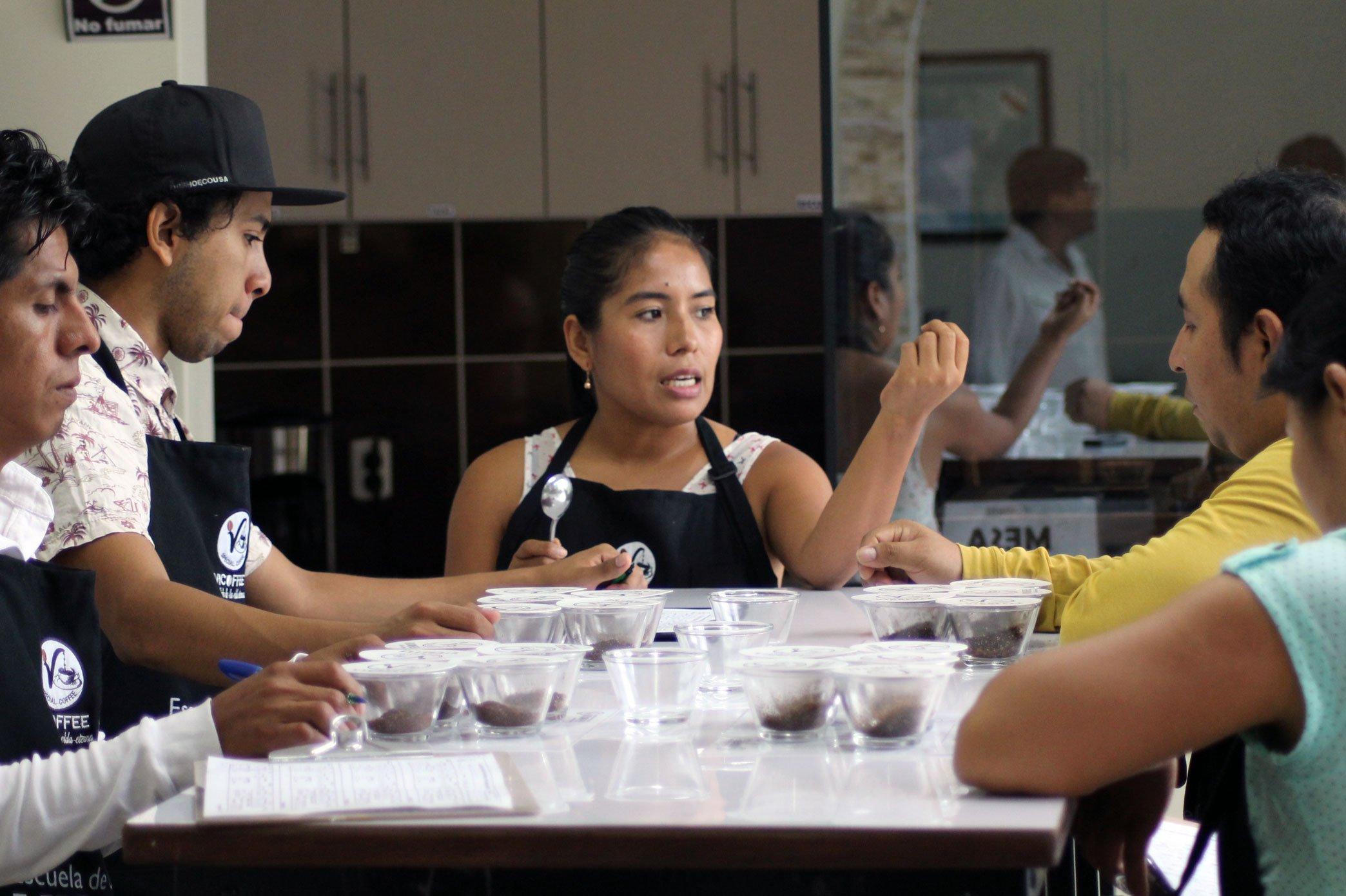 Vicoffee: En pos del mejor café de Quillabamba
