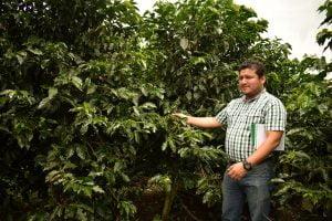 David Gonzales: «Hay un aumento del consumo de café fuera del hogar»