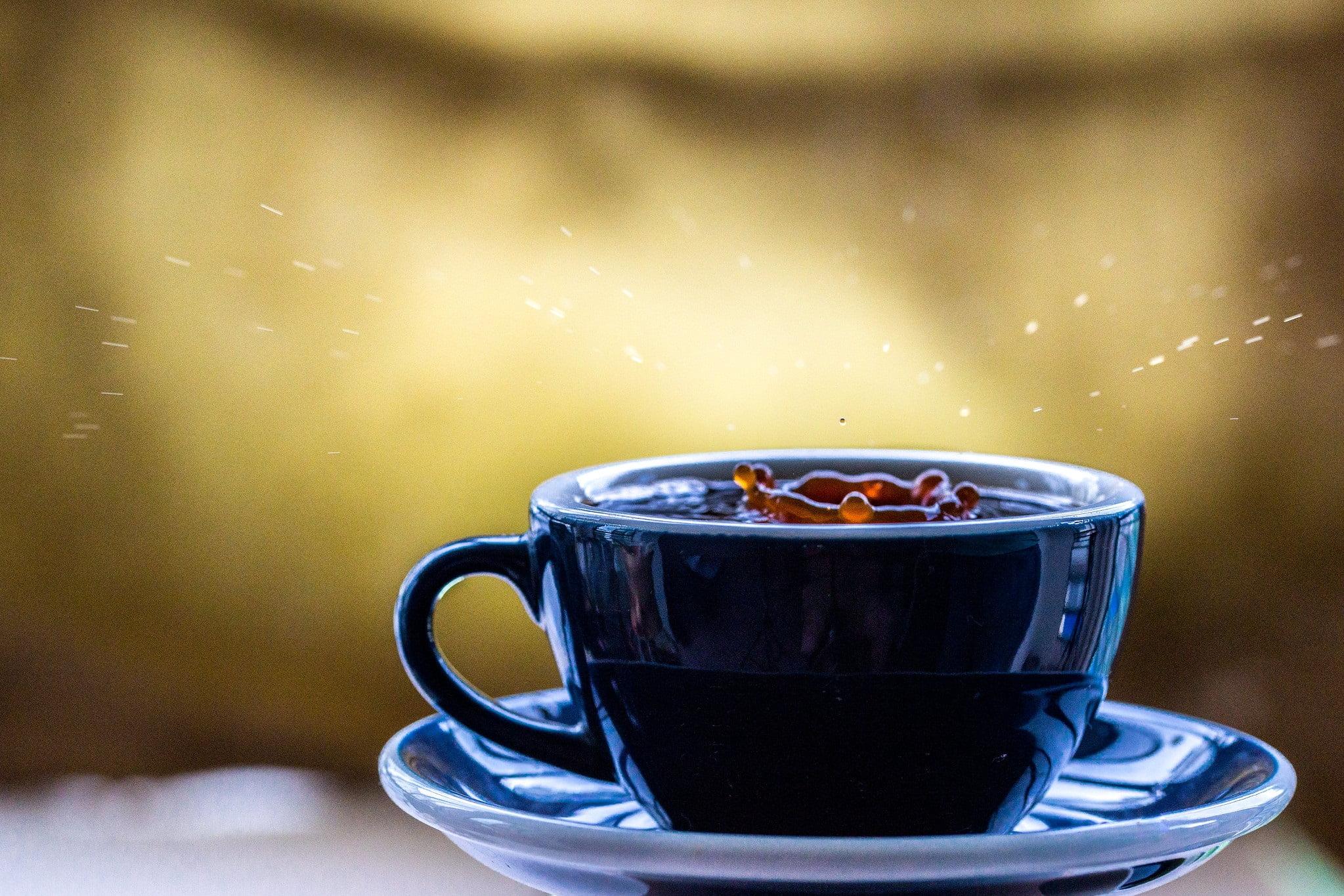 Top 5 de cafés del 2019