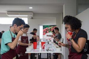Taza de Excelencia Perú 2020 inicia competencia en busca del mejor café