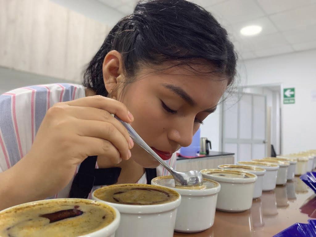 Hija de caficultores de San Martín destaca como catadora de Falcon Coffees
