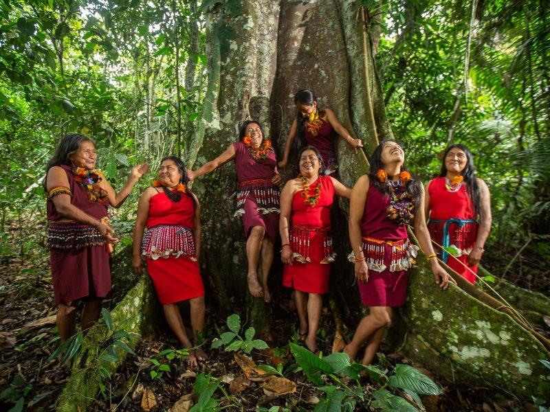 Guardianas de los bosques del Alto Mayo afectadas por el COVID-19 nos necesitan