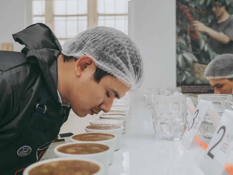Taza de Excelencia Perú: 91 cafés compiten por ser el mejor del país