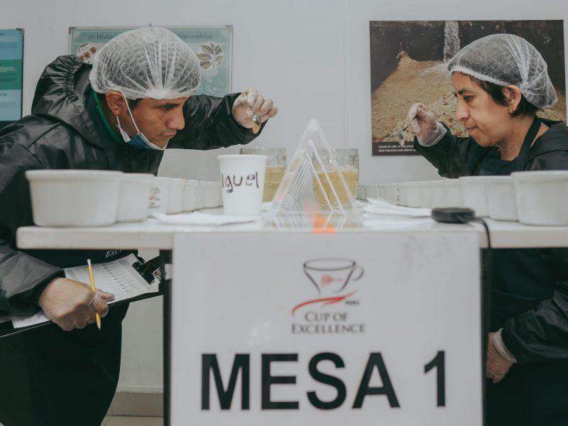 Taza de Excelencia Perú: así se evalúan los mejores cafés durante la pandemia