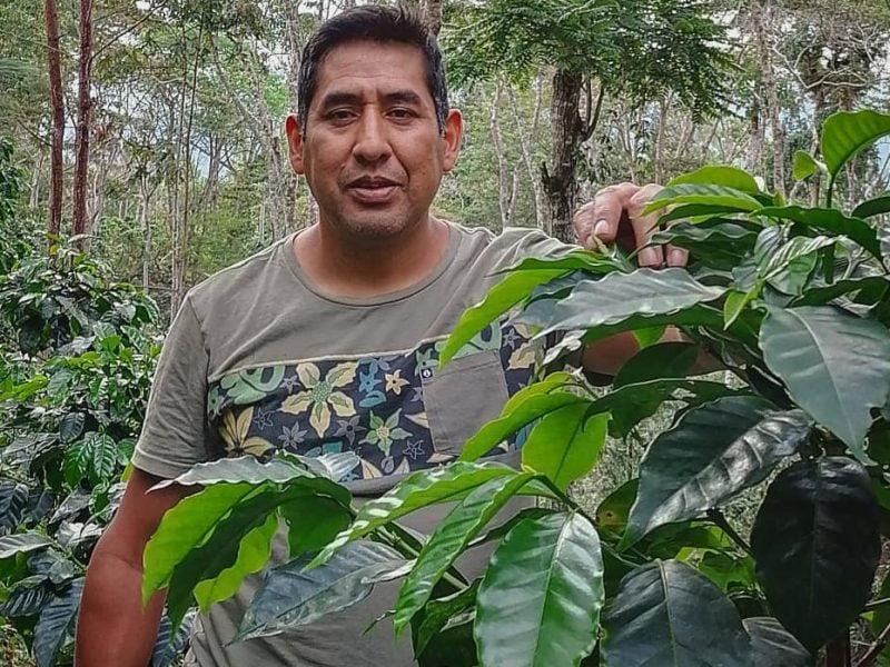 Finca La Despreciada: cafés rechazados y que hoy están entre los mejores del Perú