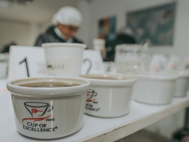 Taza de Excelencia: el viernes 30 se anuncia cuál es el mejor café del Perú