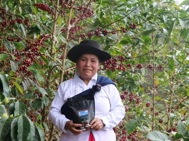 Taza de Excelencia: Café del Cusco logró más de US$ 42 mil en subasta internacional