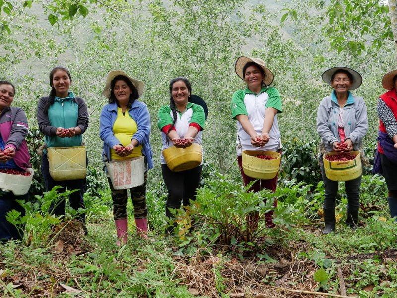 Premio Sostenibilidad SCA 2021: Bosque de Protección Alto Mayo