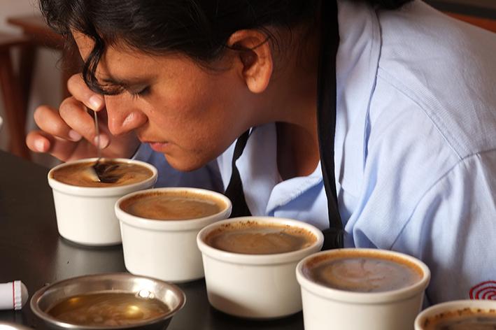 Taza Dorada Fairtrade Perú 2021: en busca de los mejores cafés de Comercio Justo