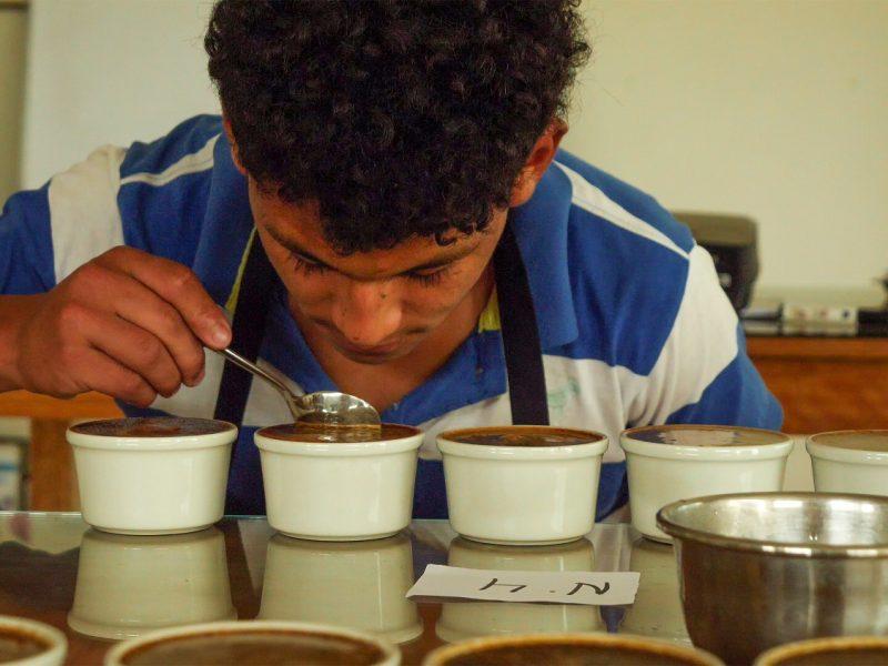 Los jóvenes catadores de café del Bosque de Protección Alto Mayo