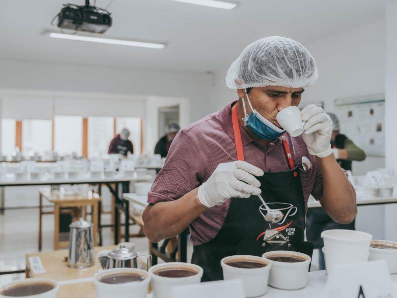 Taza de Excelencia Perú: 238 cafés compiten por ser el mejor café del bicentenario